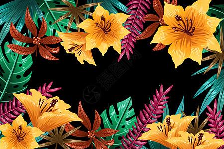 热带花卉植被背景图片