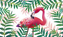 火烈鸟植物插画图片