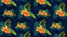 植物花卉背景素材图片