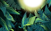 植物绿叶背景图片