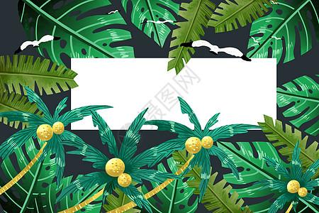 椰树植被背景图片