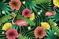 火烈鸟植被背景图片