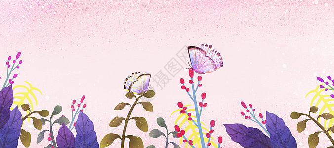 彩色蝴蝶花卉插画图片