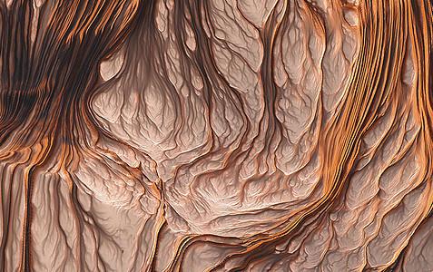树根纹理图片