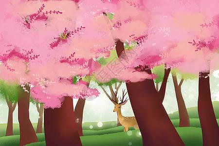 丛林深处的鹿图片