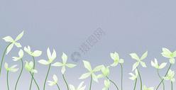 花卉背景400125786图片