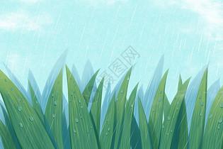 二十四节气 雨水图片