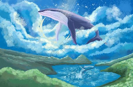 鲸鱼翱翔天际图片