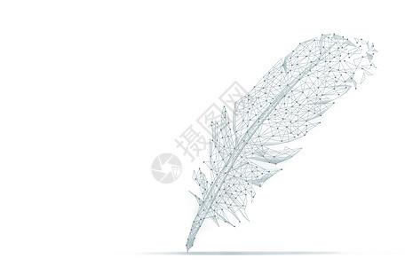 创意线条羽毛背景图片