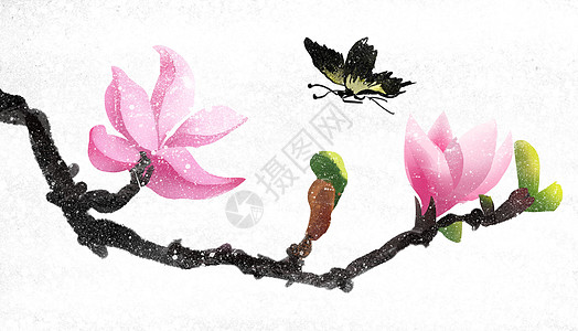 桃花枝头图片