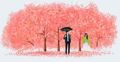 樱花树下暗恋的男孩女孩图片
