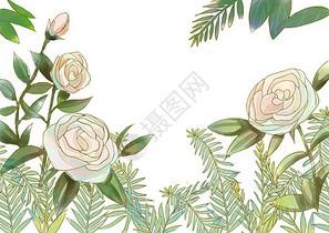 花卉边框背景图片