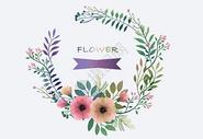 唯美清新手绘植物花环图片