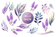 紫色薰衣草花卉植物元素图片