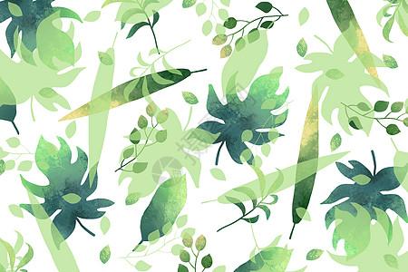 小清新植物树叶背景图片