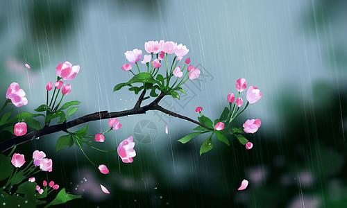 谷雨时节海报图片