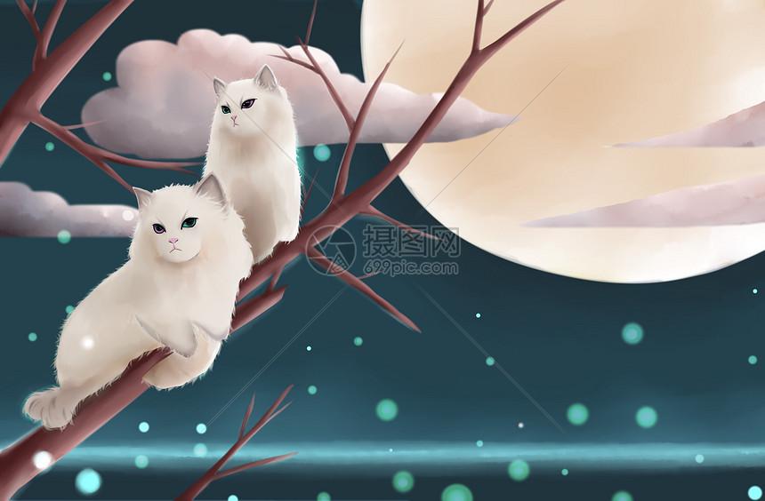 月夜下的猫图片