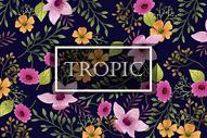 黑底热带花卉植被边框字母背景图片