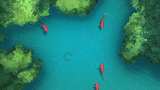 谷雨池塘鲤鱼图片