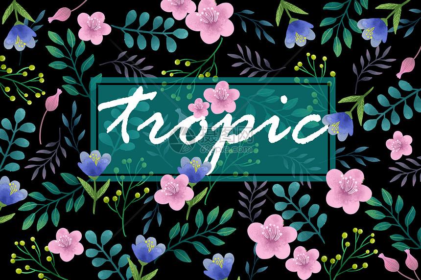 热带花卉植被边框字母边框图片