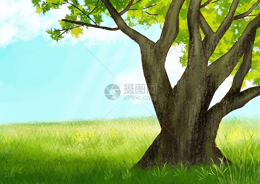 绿色草地和大树图片