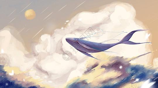 鲸背上的女孩图片