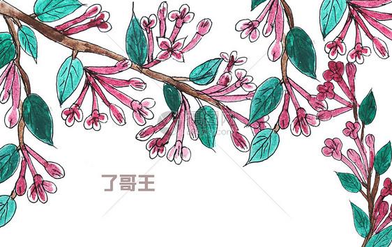 手绘水彩中药材了哥王图片素材_免费下载_psd图片格式