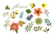 花卉植物元素集合400130572图片