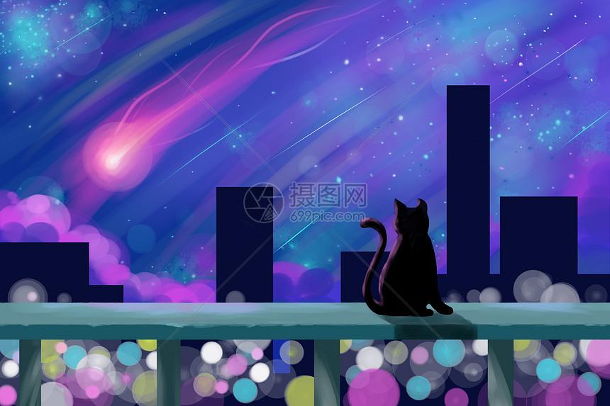 猫与流星图片