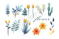 花卉植物元素集合图片