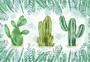 水彩仙人掌图片