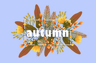 秋日字母边框花卉植被背景图片