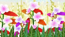 花卉植物背景素材图片