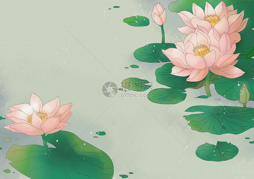 中国风荷花背景图片