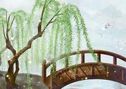 岸边的柳树图片