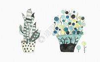 手绘盆栽图片