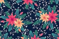 黑底妖娆花卉背景图片