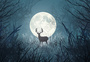 圆月之鹿图片