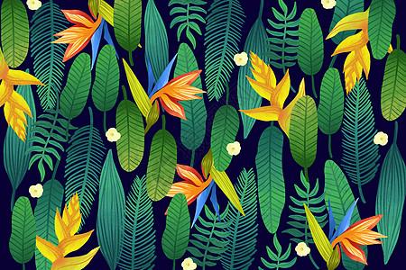 热带植被花卉图案图片