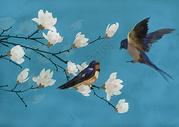 花鸟背景图片