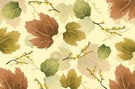 枫叶花卉树枝素材背景图片