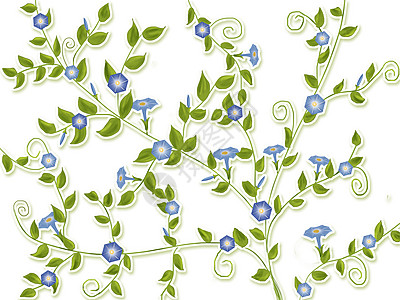 藤蔓植物插画_藤蔓植物卡通_藤蔓植物插图_手绘_板绘
