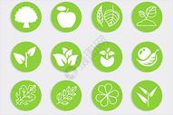 植物类图标图片