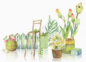 手绘水彩花卉盆景图片