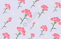 康乃馨花卉背景图片