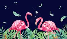 热带火烈鸟情侣图片
