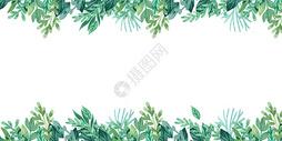 手绘水彩植物背景图片