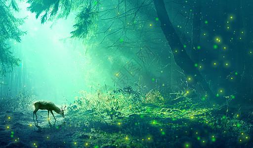 绿光森林与麋鹿图片