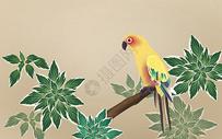 鹦鹉热带植物背景图片