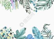 热带植物水彩素材图片